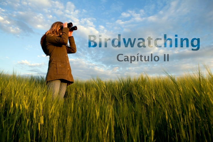 Bird Watching CapII